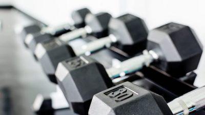 haltere-musklor